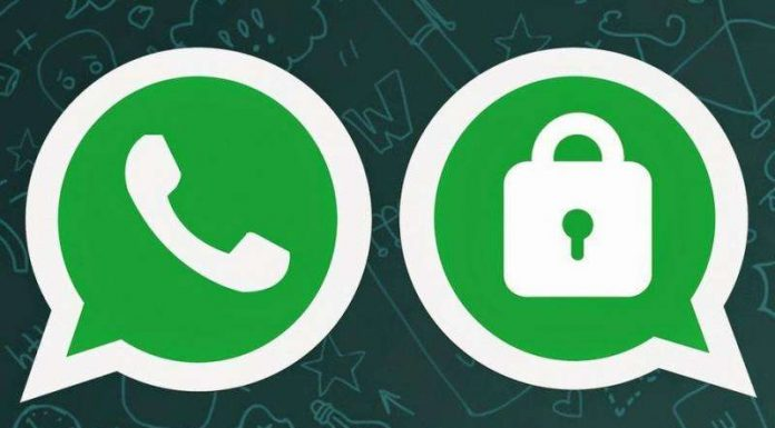 Whatsapp limits on forwarded messages to 1 Chat