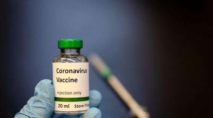 Top 4 Coronavirus Vaccine Options Which Have Been In Development