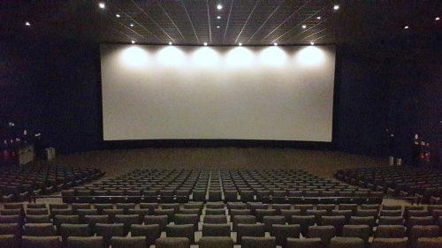 cinema halls and gyms
