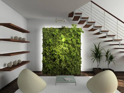 Turn Your Home Into an Eco-Friendly