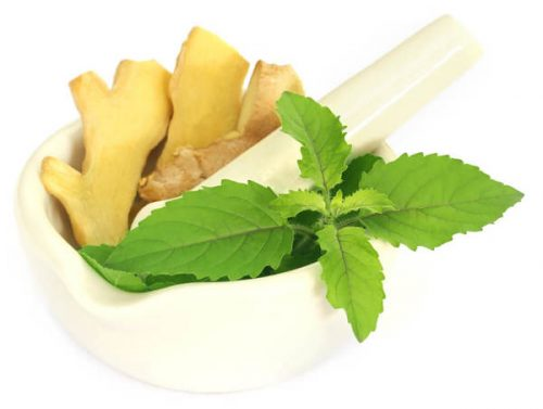 5 Best Ayurvedic Foods Items To Keep Your Lungs Healthy