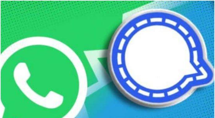 Signal or WhatsApp?