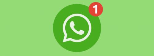 WhatsApp Group Chat