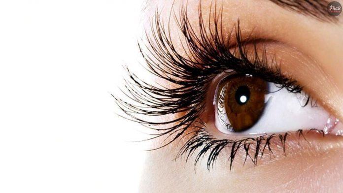 Eyesight